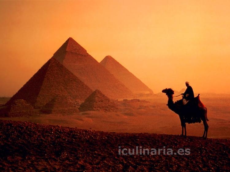 Egipto | Innova Culinaria